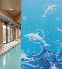 Sichtschutzfolie, Wasserwelt der Delphine